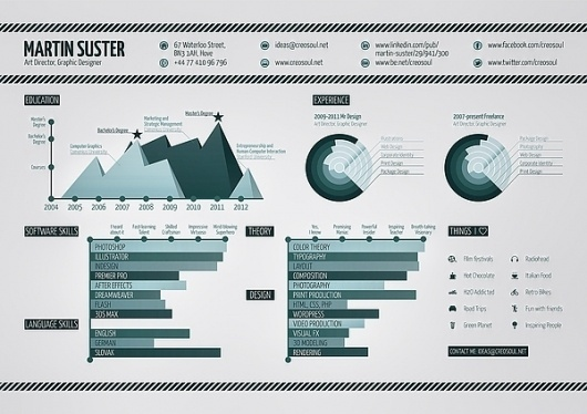 Infographic Resume on the Behance Network #print #infographic #resume #poster #creosoul
