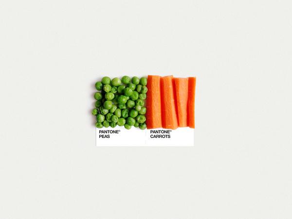 Food Art Pairings Dschwen LLC. | Design & Illustration #photography