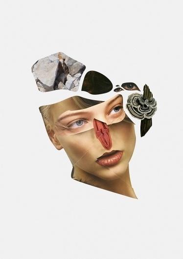 Leif Podhajsky #collage