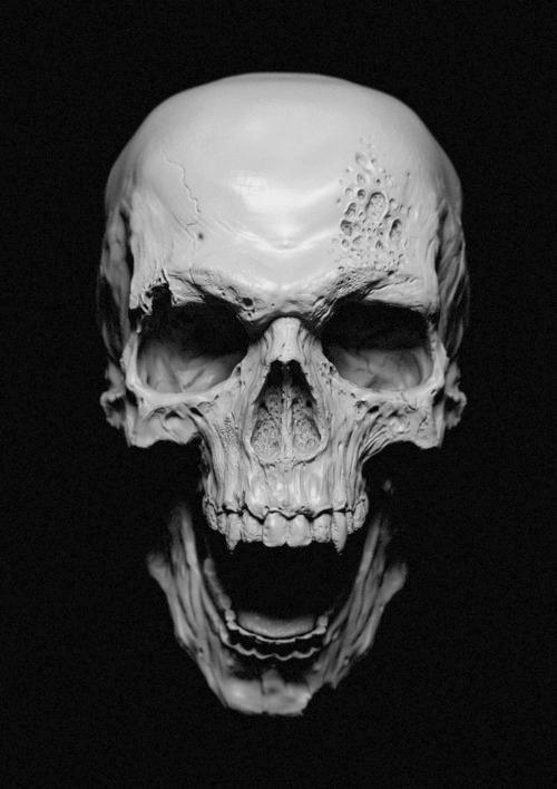 (75) Tumblr #skull