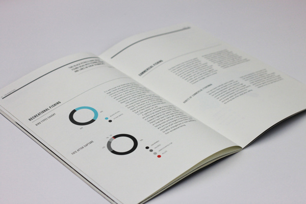 Conservation Report 2012 #scale #type #black #clean #grid #grey #blue #typography