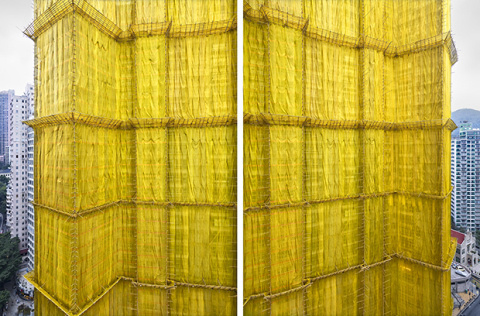 Peter Steinhauer | PICDIT #yellow #photo #photos #photography