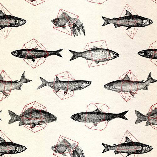 image #fish