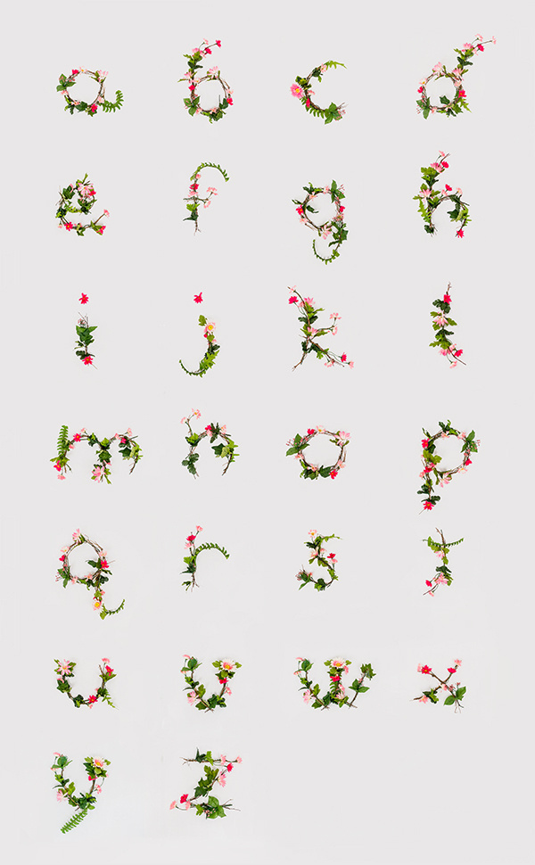 photographic alphabet of flowers! #designs #pink #photo #lee #pretty #floral #illustration #alphabet #photography #nature #poster #anne #type #branches #3d #flowers #typography