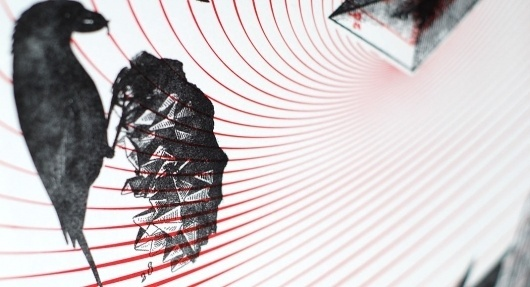 Chelsey Scheffe | Birds #birds #print #red #poster