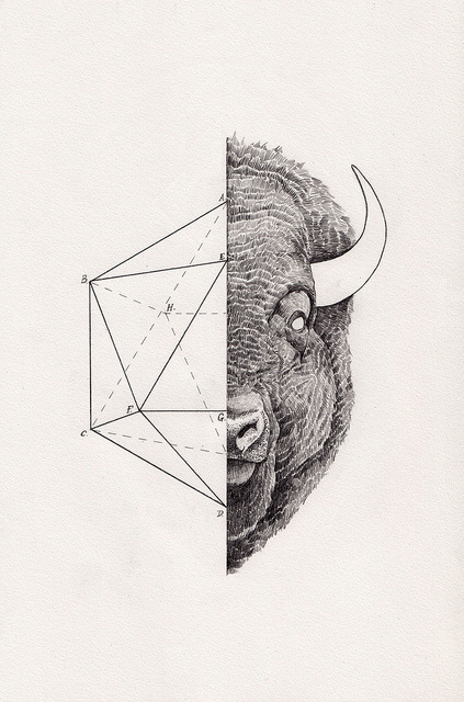 Peter Carrington #inspiration #geometry #illustration #art #animal