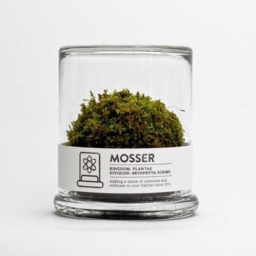 I love monday #mosser #design #product #glas #moss #green