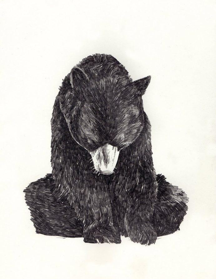 bear #bear #love