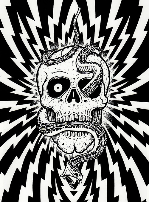 Google Image Result for http://25.media.tumblr.com/tumblr_lzn132eH691r9ny72o1_500.jpg #giant #skull #mike #snake