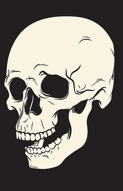 Skull Illustration | Flickr Photo Sharing! #skull