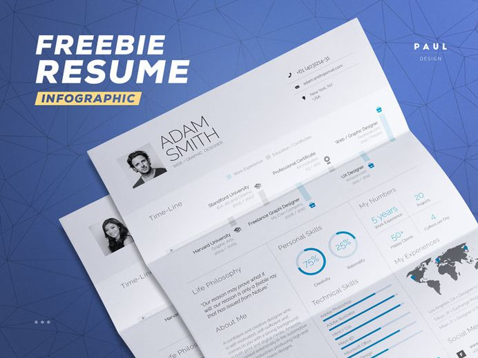 Free Infographic Resume Template in Word and Indesign File Format