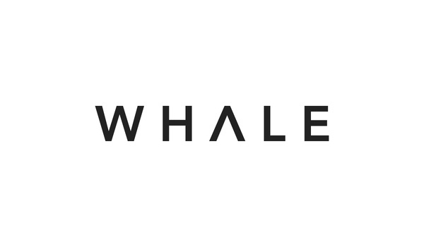 Elevn Co. / Whale Lifestyle Website #logotype #minimalism #clean #simple #logo #typography