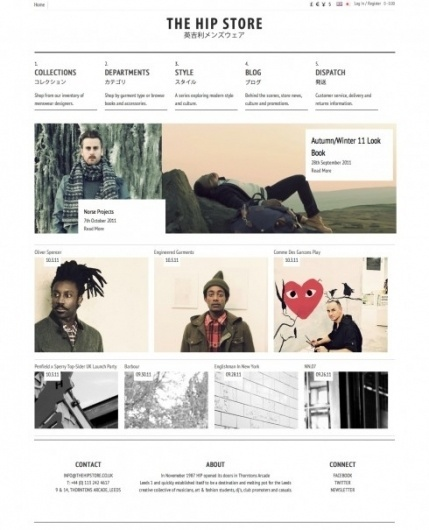The website design showcase of The Hip Store. #website #grid #wed #design