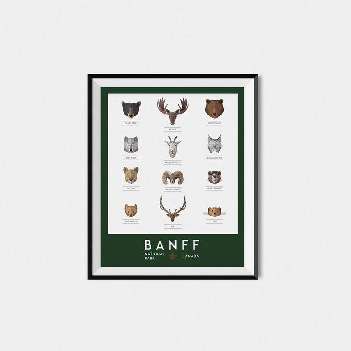 Graphic Design Banff National Park Modern Animals