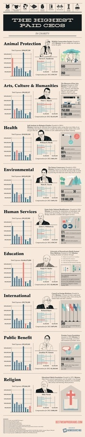 The Highest Paid CEOs in Charity #infographic #design #graphic