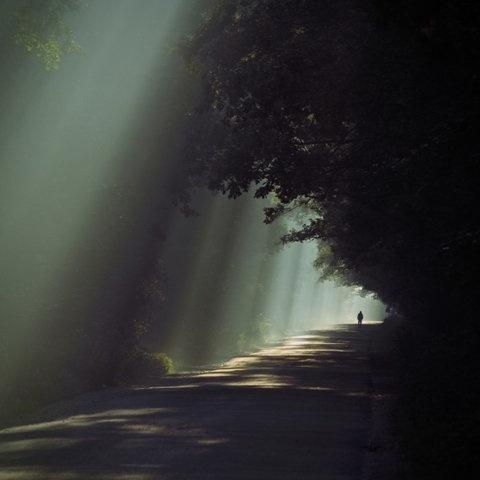 FFFFOUND! #lighting #photography