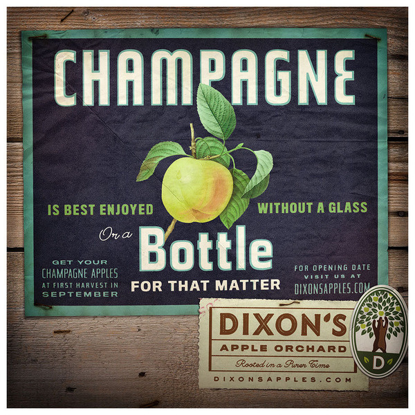 DIXON'S APPLE ORCHARD Jesse Arneson #fruit #advertising #illustration #vintage #type