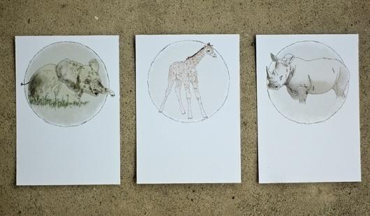jared smyth #illustration #postcards #animals