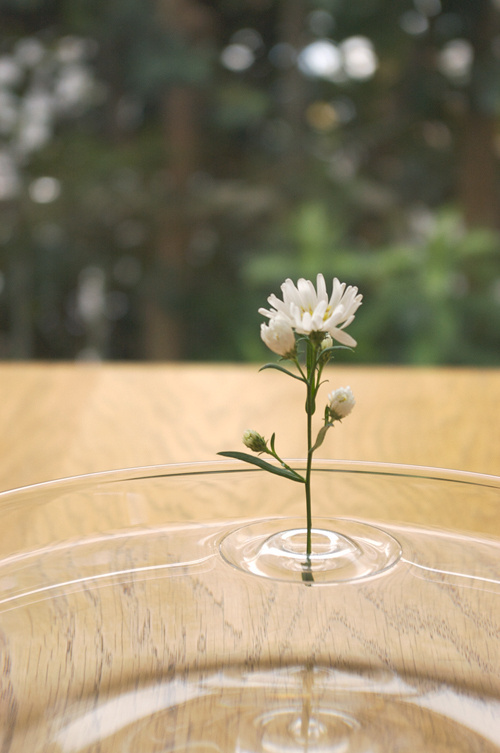 "CJWHO ™ (""Floating Vase / RIPPLE"" is their first...) #creative #amazing #vase #design #floating #ripple #clever"