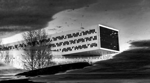 Puddle noir. #contast #building #modern