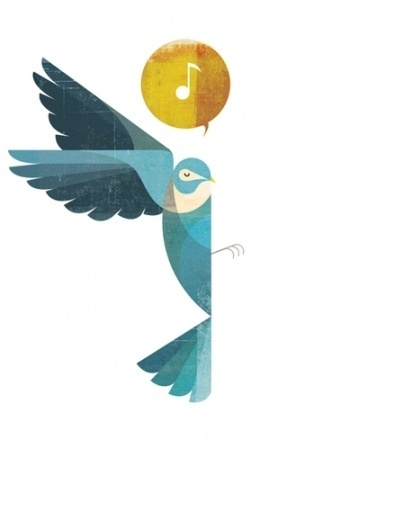 Illustration on the Behance Network #illustration #vector #bird