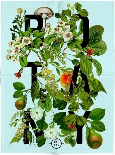 tumblr_m0647xfnKN1qazg3ko1_1280.jpg (570×767) #botany #design #floral #poster