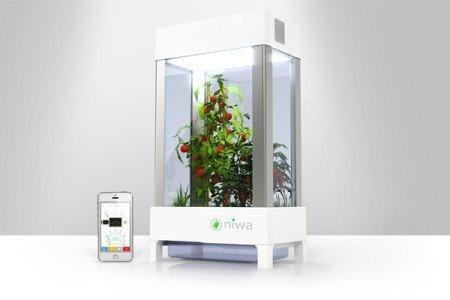 With Niwa growing your own indoor garden is just an app away! #design #home #product #indoor #industrial #garden