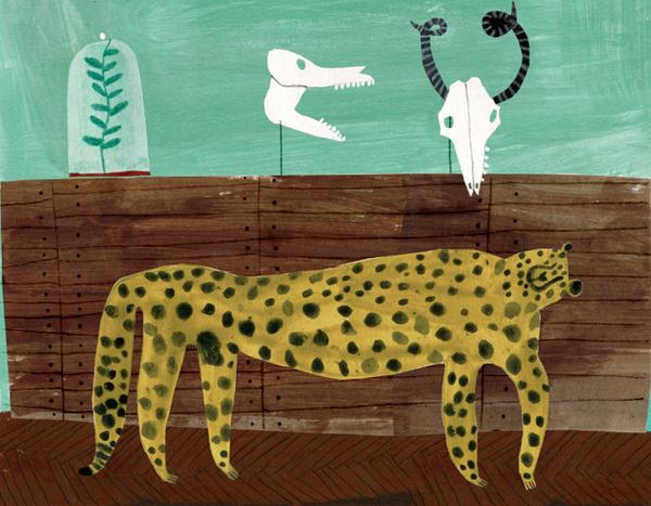 Emma Lewis #leopard #biology #illustration #object #skull