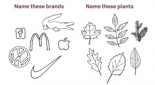 Name These Plants/Brands | Adbusters Culturejammer Headquarters #drawings #ads #irony
