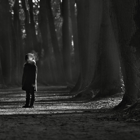 Untitled, photography by Magdalena Berny #forest #children