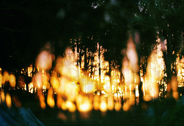photo #photography
