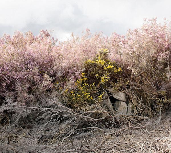 Landscape Photography by Paul Gaffney #inspiration #photography #landscape