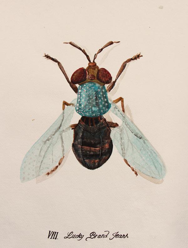 Urban Bugs on Behance #paint #bugs #fly
