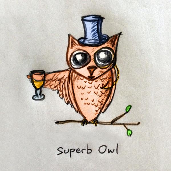 Superb Owl #illustration #bowl #owl #super