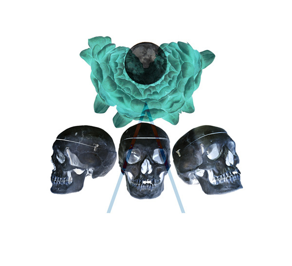 Playing with Spikes #roses #skulls #magic #blue #dark #moon