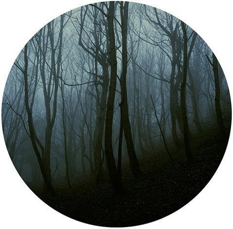 FFFFOUND! | Laura Bell - BOOOOOOOM! - CREATE * INSPIRE * COMMUNITY * ART * DESIGN * MUSIC * FILM * PHOTO * PROJECTS #circle #forest