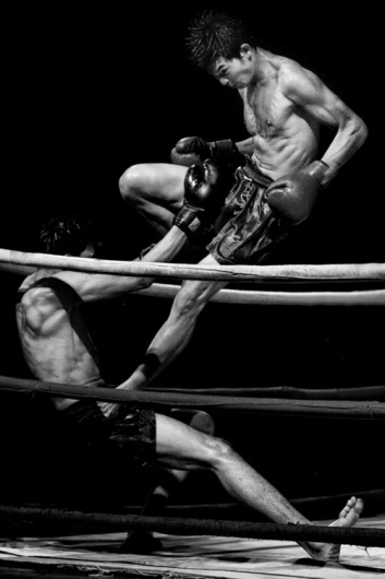 gummi #photographic #boxe