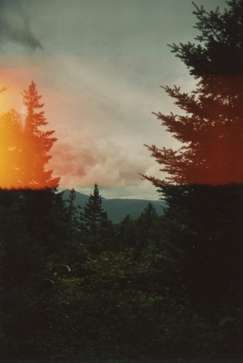 www.joshdelacruz.tumblr.com ✌ #photography #light #leak #nature
