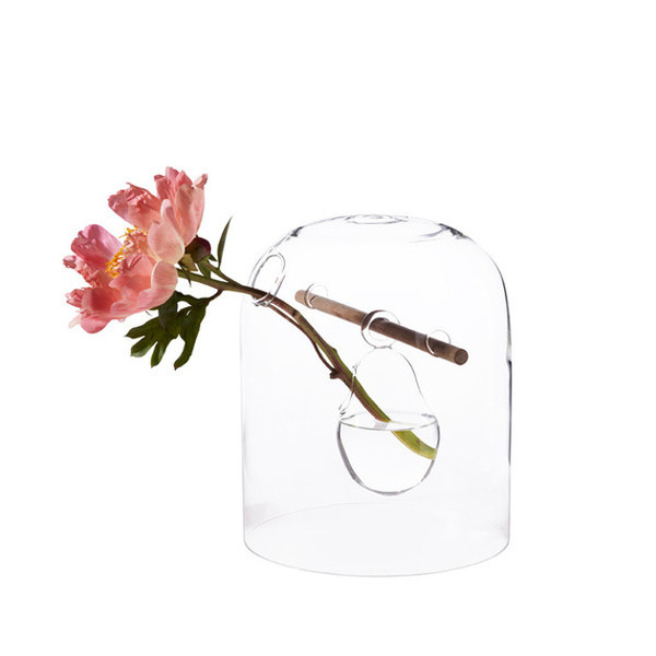 glass vase with flower #glass #transparent #vase #flower