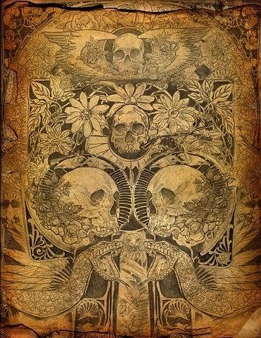 Ian Walsh Design #snake #illustration #skull