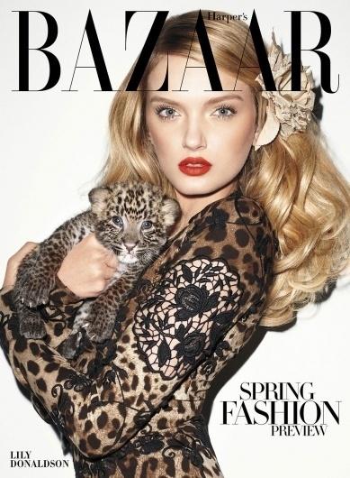 Google Image Result for http://www.designscene.net/wp-content/uploads/2010/12/Lily-Donaldson-by-Terry-Richardson-for-Harpers-Bazaar-01.jpg #leopard #bazaar
