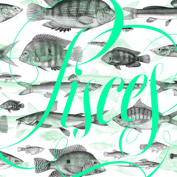 Pisces on Behance #lettering #copperplate #ferrando #pisces #sergi