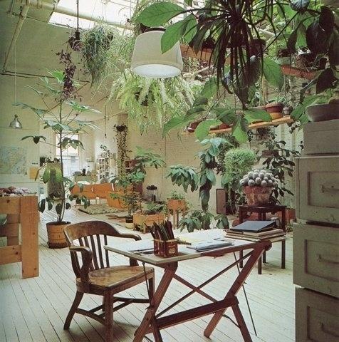 FFFFOUND! | OLD CHUM #plants