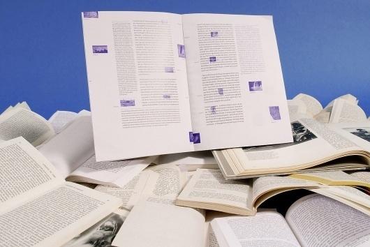 Sophie Demay - Process #publication