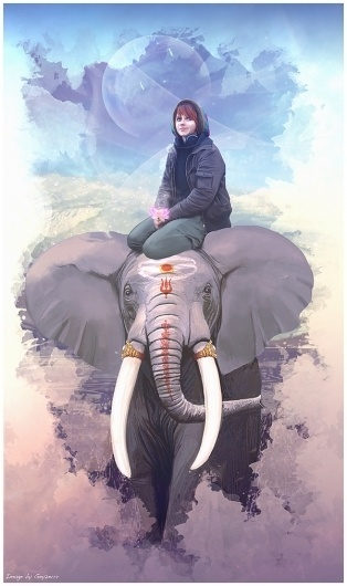 Girl and elephant on the Behance Network #girl #elephant