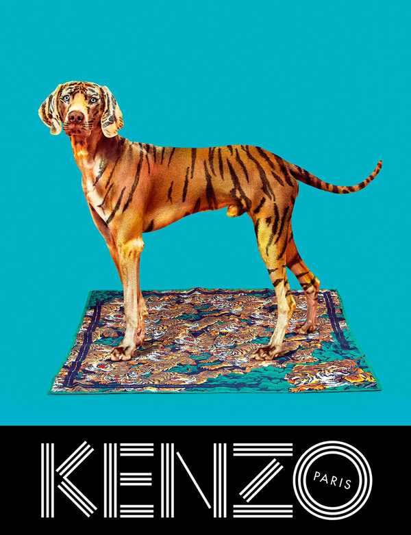 kenzo_fw13_campaign_3 #photography