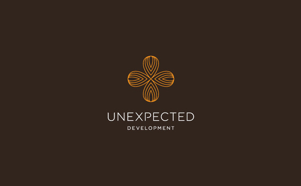 unexpected development logo design #logo #design