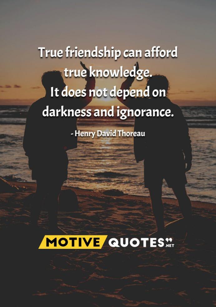 True friendship can afford true knowledge.