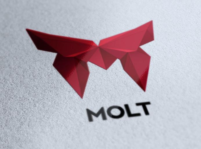 Molt Identity Corporate by Bruno do Nascimento #logotype #polygon #geometry #branding #poly #corporate #identity #lowpoly #logo