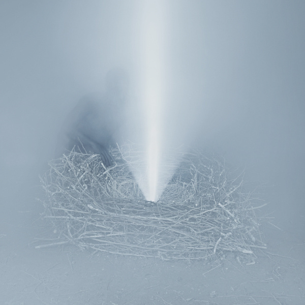Witness by Photographer Troy Moth | Hi Fructose Magazine #mist #photography #surreal #forest #light #trees